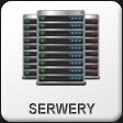 Hosting serwerów dla firm