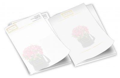 Bloom Box